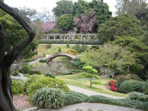 Jard n bot nico de la universidad de valencia vuelos for Botanic com jardin